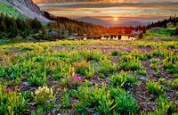 Sunset - Gold King Basin