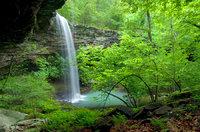 Bowers Hollow Waterfall I