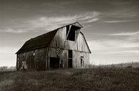 Boston Barn II