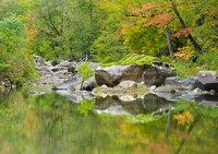 Richland Creek Reflections II