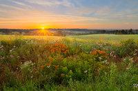 Ozark Sunrise