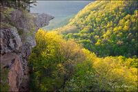 arkansas, wilderness, wilderness area,