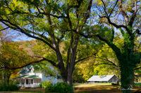 boxley valley, arkansas, farmhouse, walnut tree