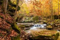 Smith Creek, Nature Preserve, nature conservancy, fall color, waterfall, arkansas, newton county, buffalo river