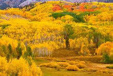 colorado, the dyke, keblar pass, raggeds, mountains, aspen trees