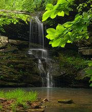 Magnolia Falls II