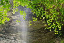 Richland Creek Pour Off