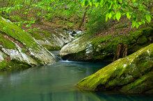 arkansas, buffalo river, wilderness, wilderness area,