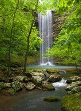 Bowers Hollow Waterfall III