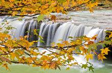 Falling Water Falls II