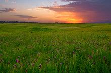 missouri, prairie, sunset