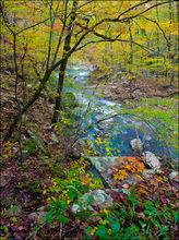 Richland Creek, wilderness area, Big Devil's Fork, Arkansas, fall