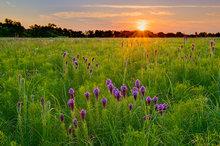 missouri, wah sha she, prairie, sunrise