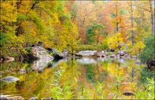 Autumn, fall, fall color