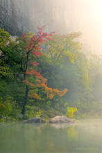 Buffalo River, fall, fall color, Steele Creek, Arkansas, morning light, fog