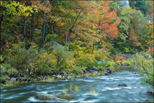 buffalo river, fall color, arkansas,