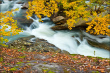 Autumn, falling water falls, creek, arkansas, ozarks