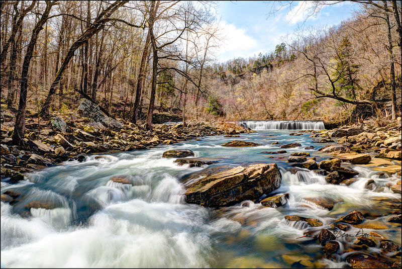 Trees, redbud, waterfall, richland creek, spring, wilderness area