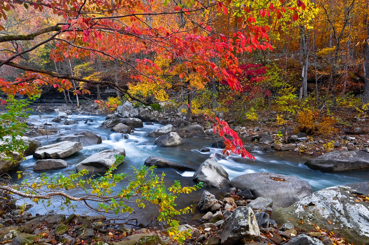 arkansas, wilderness, wilderness area, , Richland Creek