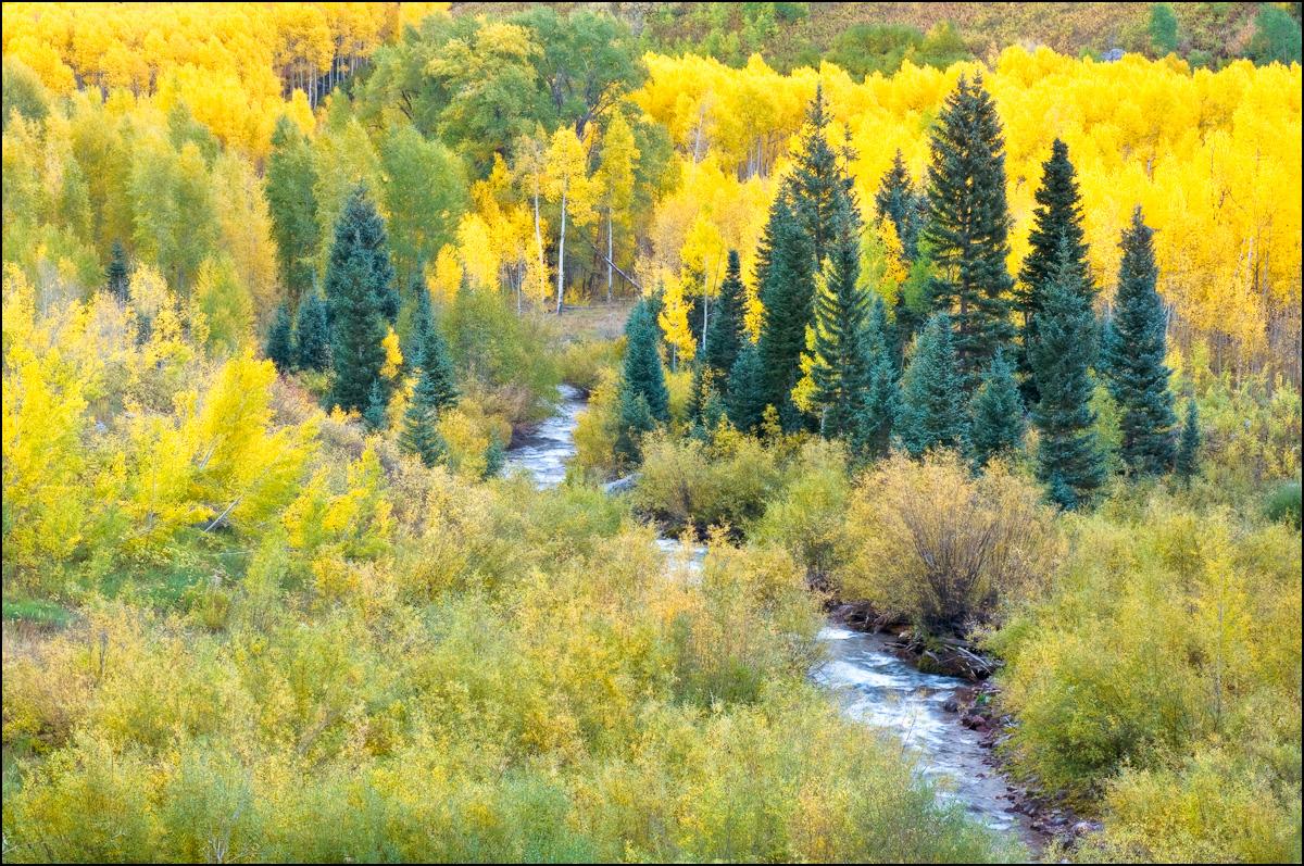Colorado, fall, aspen,  maroon creek, photo