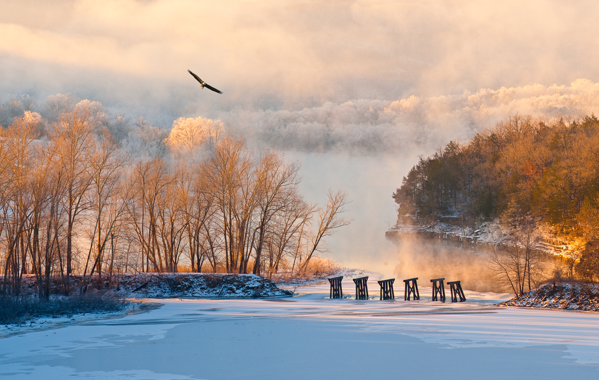 arkansas, ozark, eagle, sunrise, hoar frost, beaver, white river, eureka springs, photo