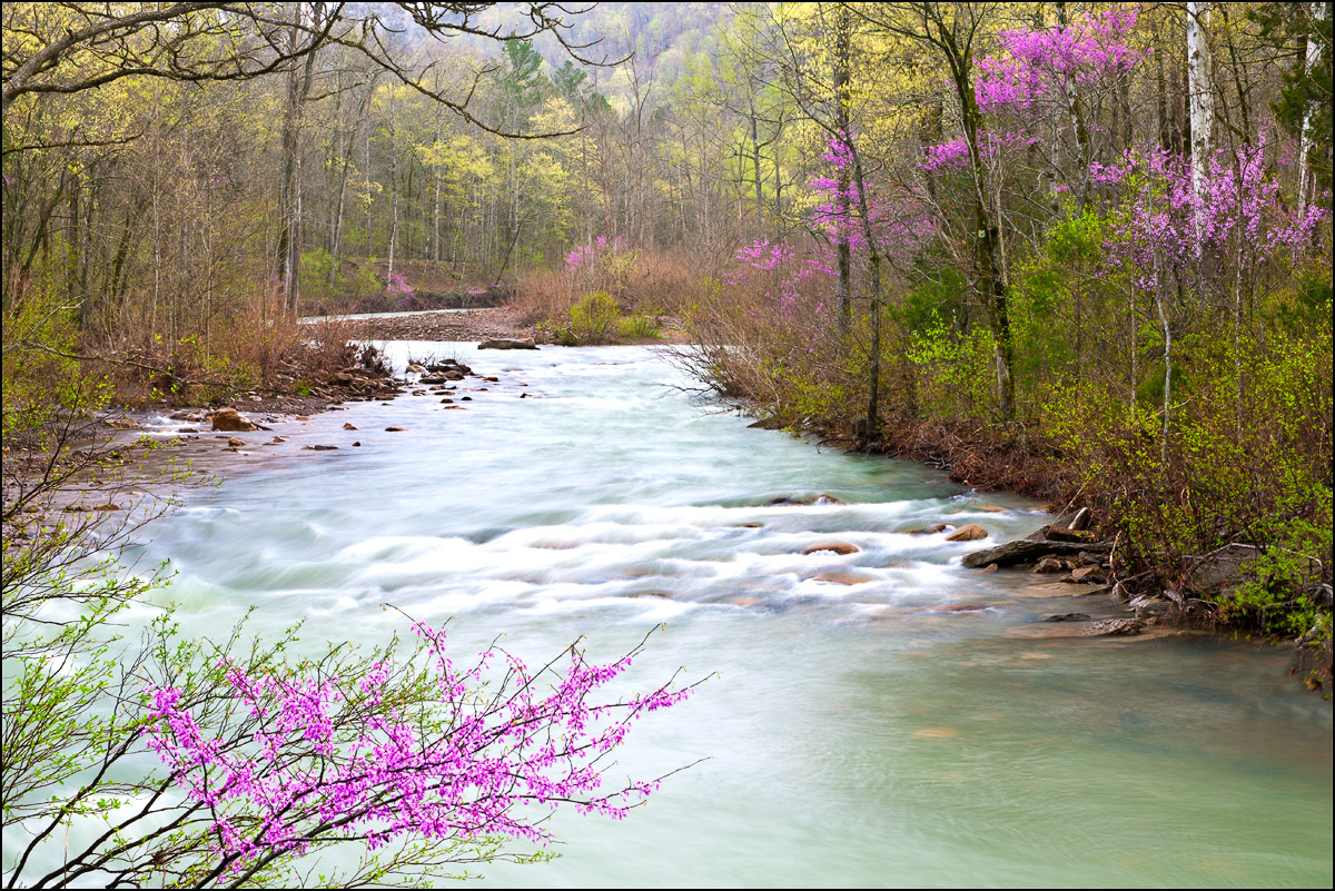 arkansas, ozark, Richland Creek