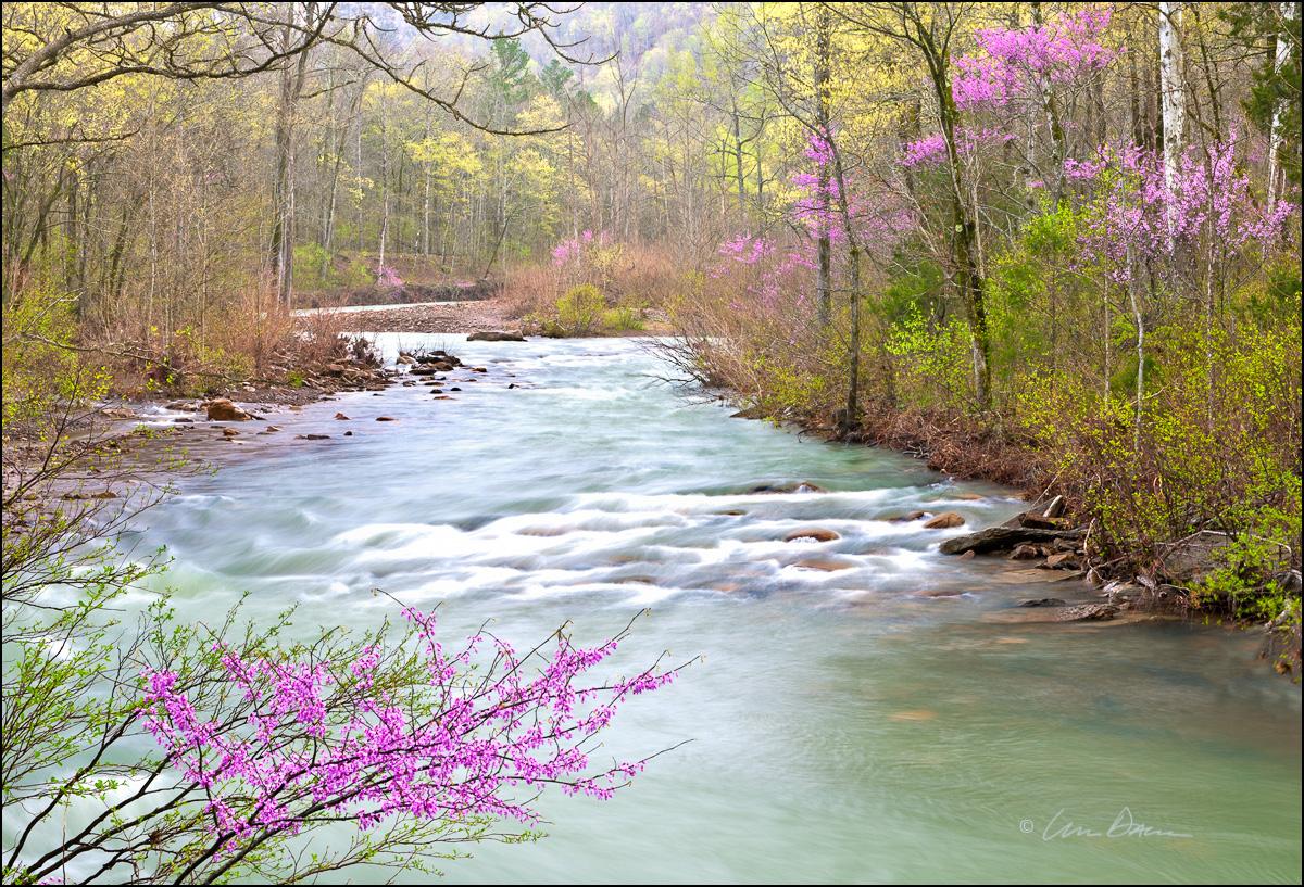 arkansas, ozark, Richland Creek, photo