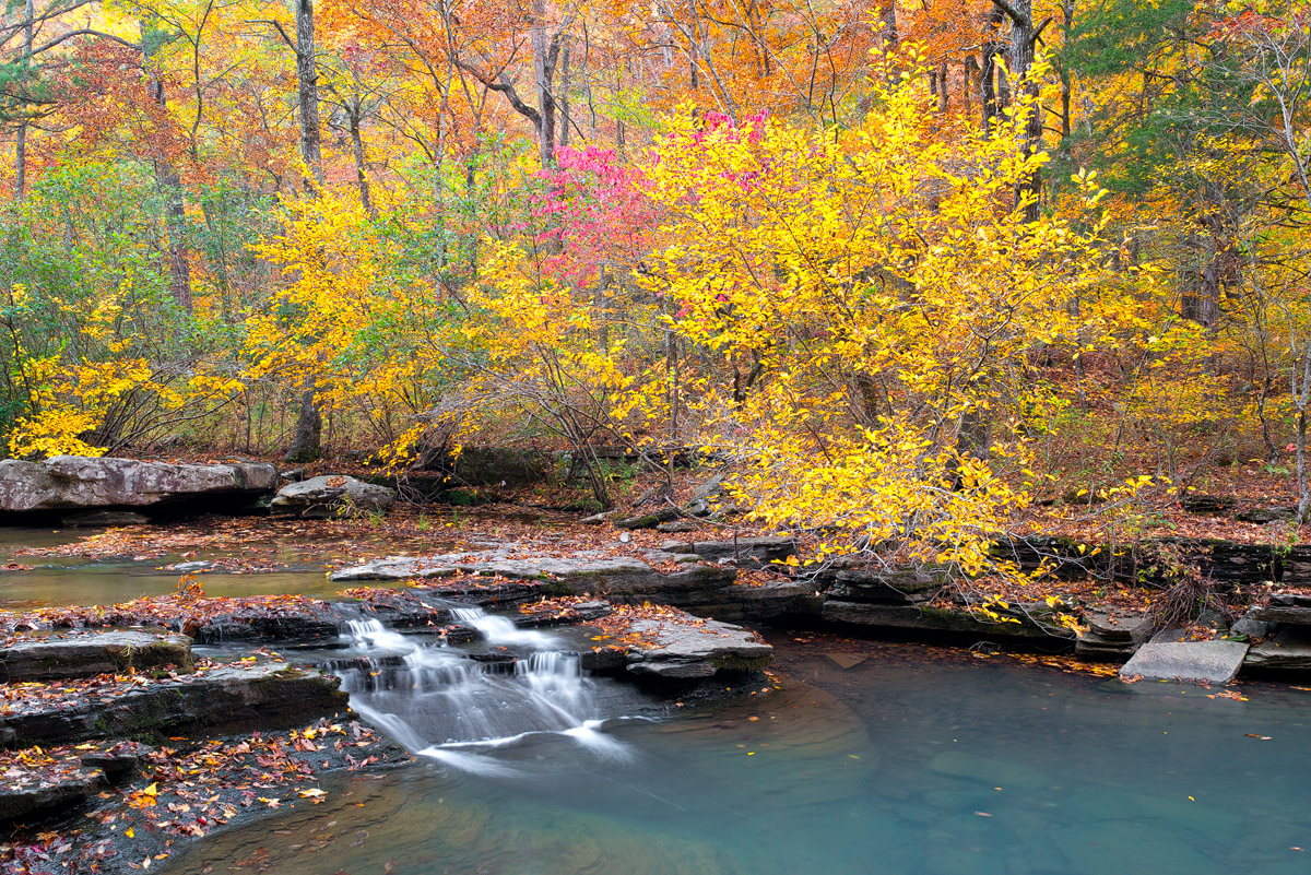 A small cascade along Haw Creek during the peak of fall color.  Arkansas Nature Photography