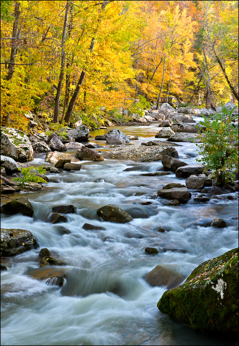 Ozark, Richland, Creek, Arkansas, Ozark National Forest, Richland Creek Wilderness Area, photo