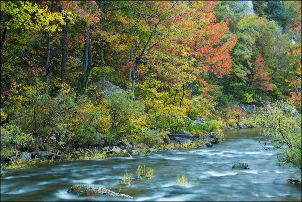 buffalo river, fall color, arkansas, , photo