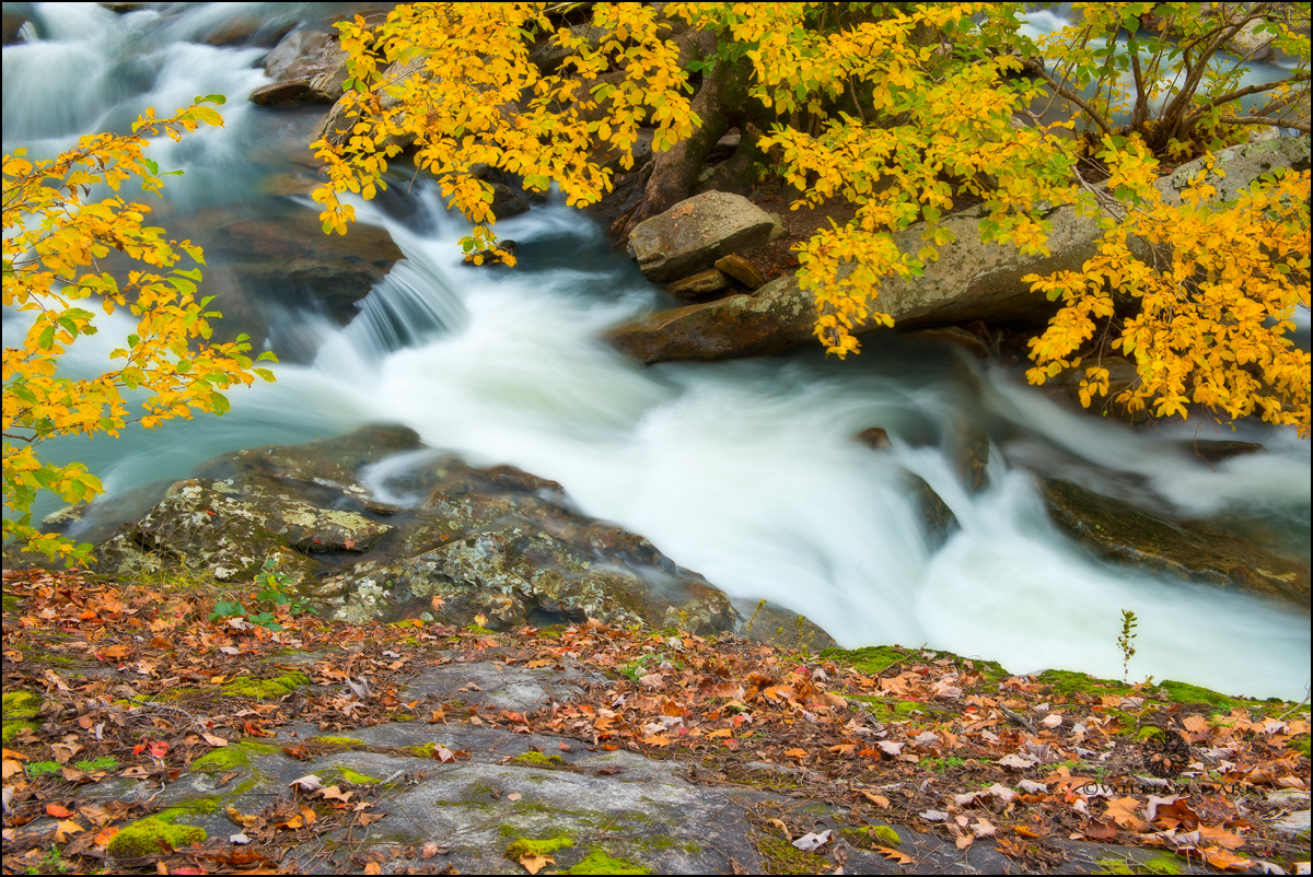 Autumn, falling water falls, creek, arkansas, ozarks, photo