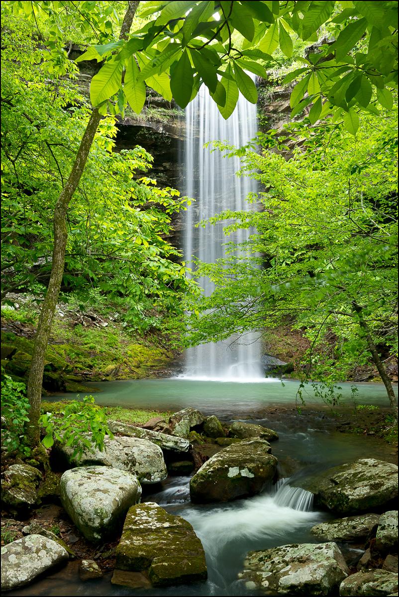 Bowers hollow, waterfall, spring, buffalo river, wilderness area, arkansas, 223LS