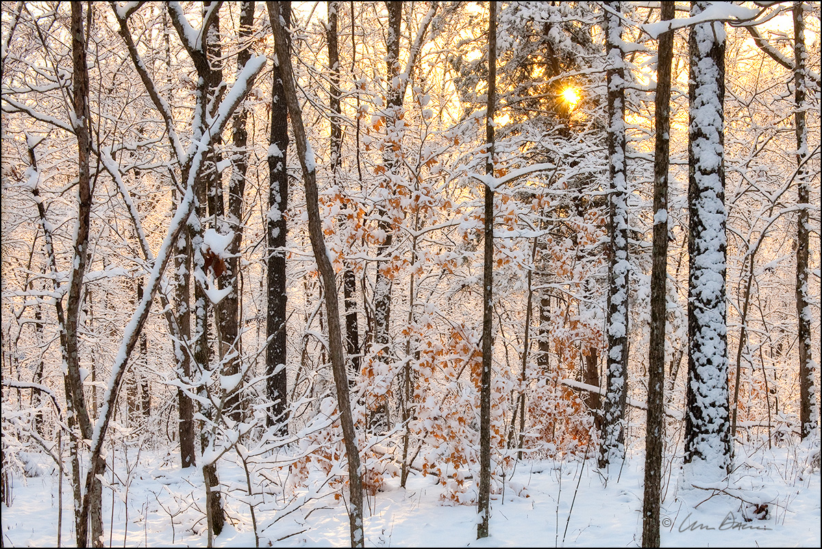 Snow, Ozarks, Buffalo River, Tyler bend, Arkansas, snowfall, sunrise, photo