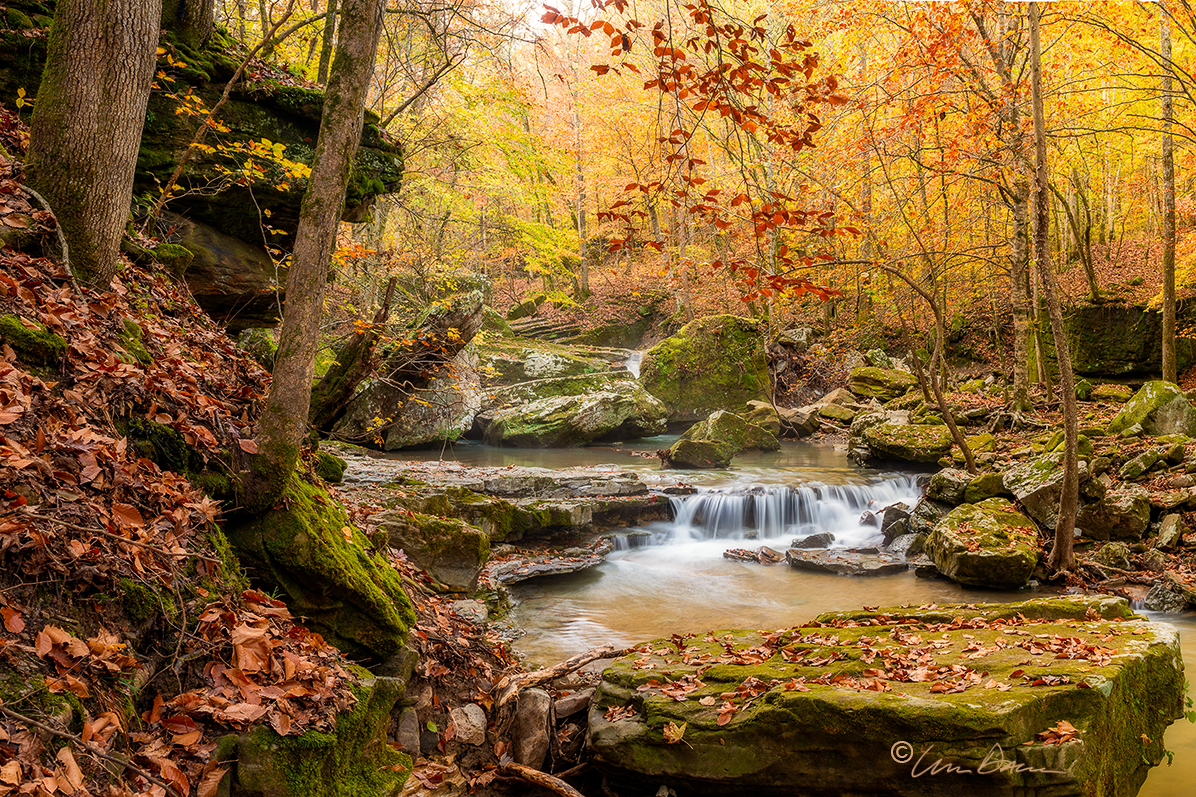 Smith Creek, Nature Preserve, nature conservancy, fall color, waterfall, arkansas, newton county, buffalo river, photo